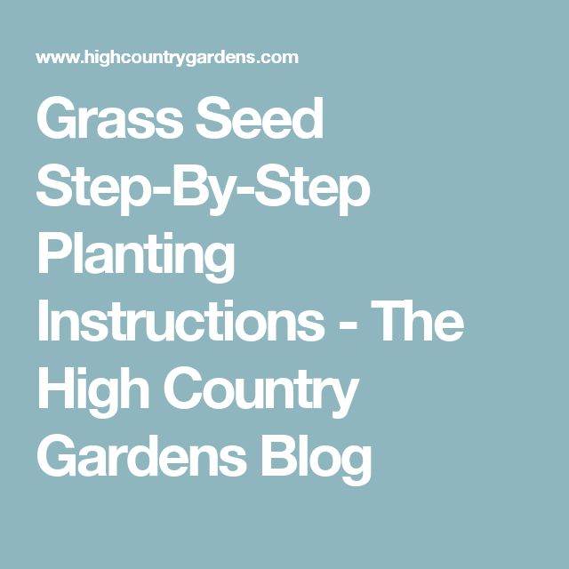 Grass Seed Step-By-Step Planting Instructions  - The High Country Gardens Blog