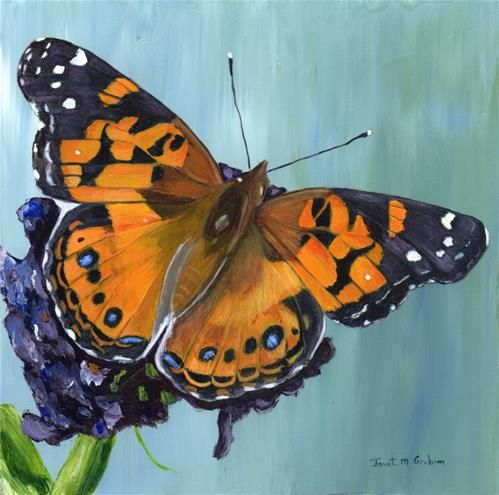 Realistic butterfly paintings - photo#34