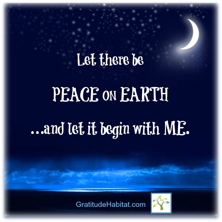 project peace on earth When i first met steve and watched the video for project peace on earth i got  tears in my eyes and chills throughout my body i became completely inspired  with.