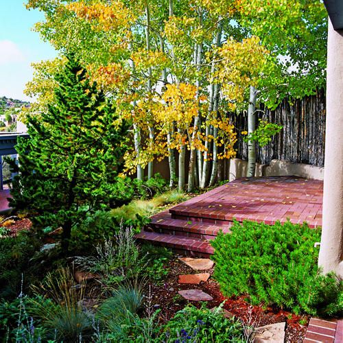 17 best images about landscaping ideas trees on pinterest mountain home plans front yards - Mountain garden landscaping ideas ...