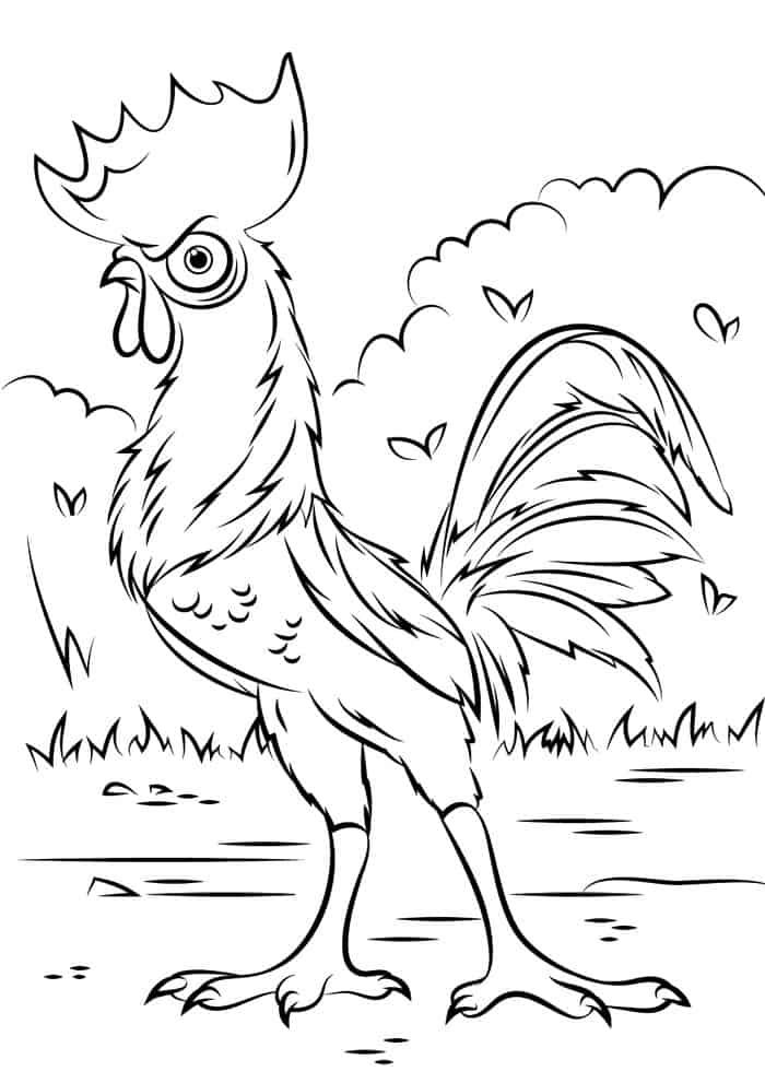 Heihei The Chicken From Moana Coloring Pages Chicken Coloring Pages Disney Coloring Pages Chicken Coloring