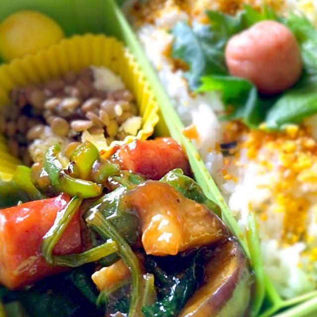 本日の大学生ガッツリ弁当は( ̄Д ̄)ノ❤️ - 54件のもぐもぐ - 茄子とピーマンの甘辛味噌炒め、レンズ豆のカッテージチーズサラダ、うずらの卵カレー風味、紫蘇梅、ふりかけ、隠れ海苔弁 by miebo