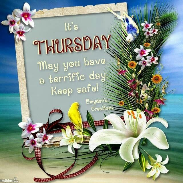 Best Thursday Wishes Quote: 380 Best Thursday Images On Pinterest