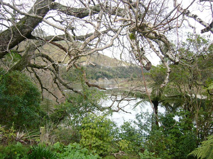 View to the Awa from the rear of Koriniti marae
