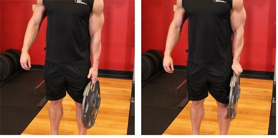The Best 5 Forearm Exercises for Mass