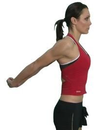 Overview Symptoms Causes Treatment Exercises    Outline of a rehabilitation program for shoulder impingement syndrome.  Aims of rehabilitation The aim of a shoulder impingement syndrome rehab program is to reduce pain and inflammation, improve or maintain mobility of the shoulder, str