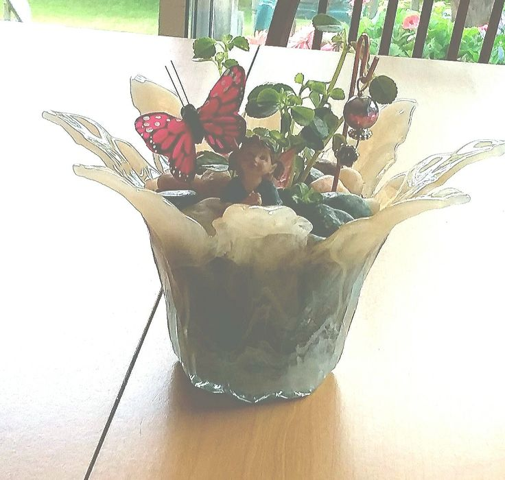 Fairy garden plant (for sale)