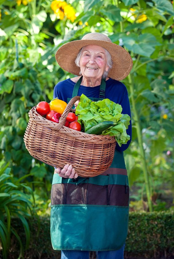 Older adults therapy horticulture