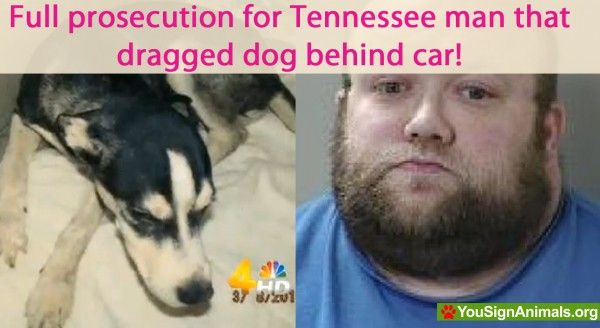 Full prosecution for Tennessee man that dragged dog behind car in an effort to discipline the pooch! | YouSignAnimals.org