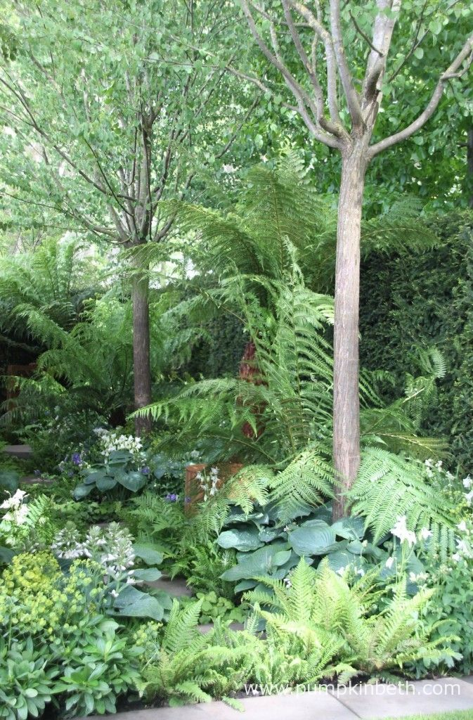 I loved this area at the back of the Homebase Garden, it felt restful and tranquil.