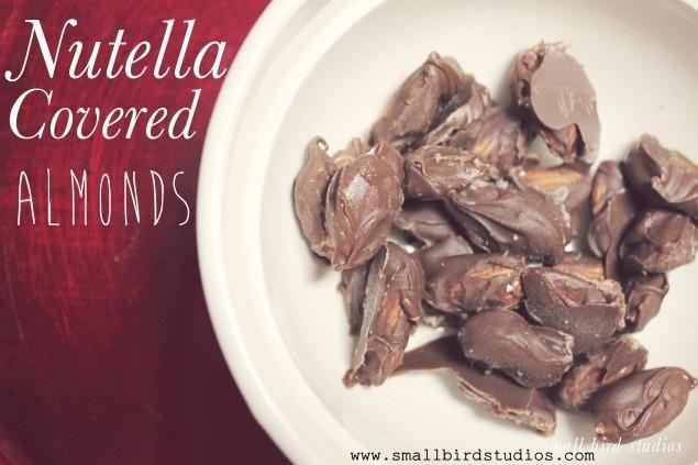 Nutella Covered Almonds