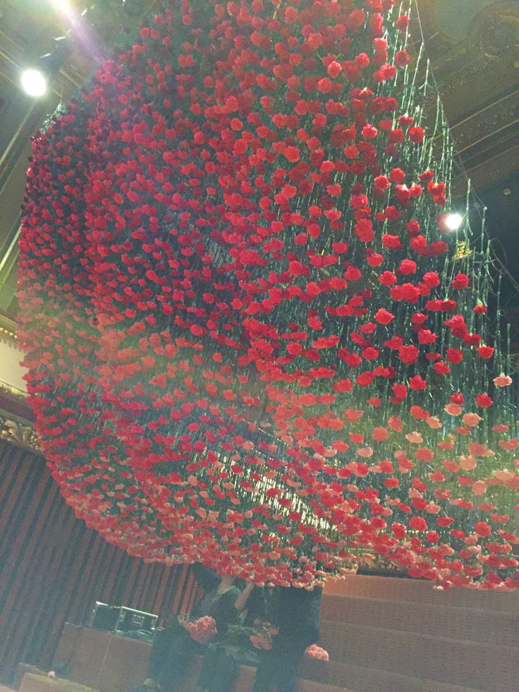 loved this carnation installation made by Fleuriot fleurs at the Victoria Hall Geneva.