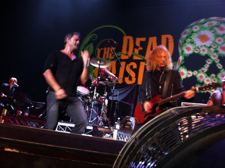 Dead Daisies Brisbane