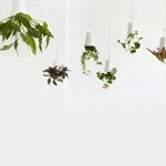 Sky Planter, an upside-down planter that saves floor space by!