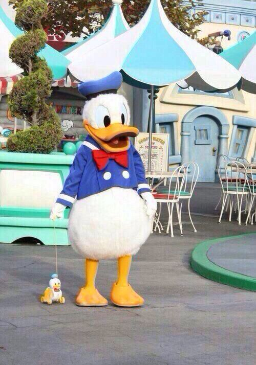 Donald and a toon