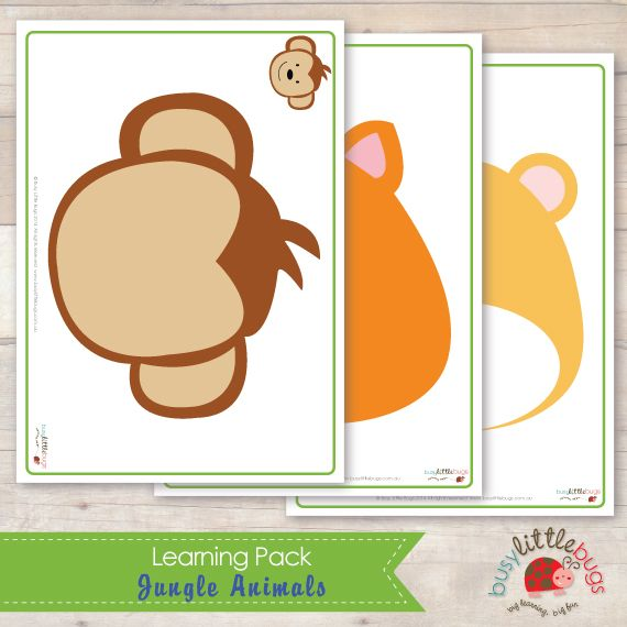 Busy Little Bugs - Jungle Animals Learning Pack - Playdough Mats