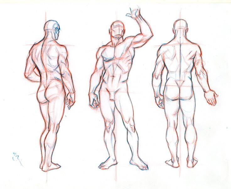 55 best Character Turnarounds images on Pinterest | Character design ...