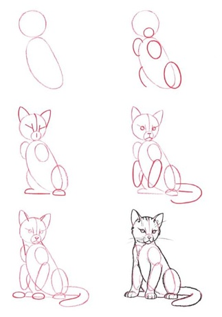 draw a cat :)