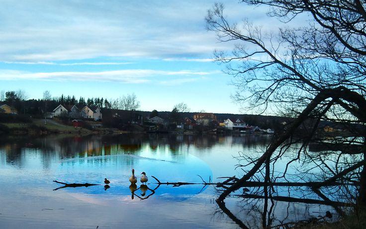 Glomma river, Norway. February 2015. Photo: Ann Christin Skogstad