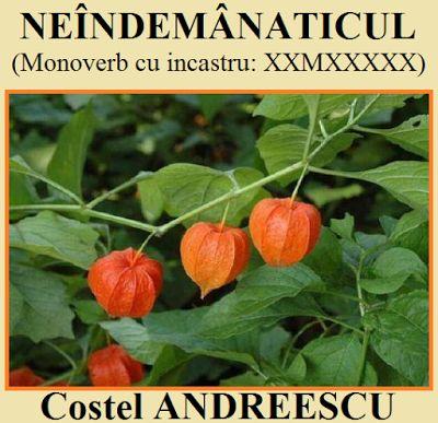 Jocuri de cuvinte, logice şi distractive, pentru orice vârstă: Colaborări... Costel ANDREESCU.