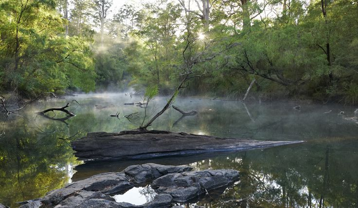 The Warren River Pemberton WA