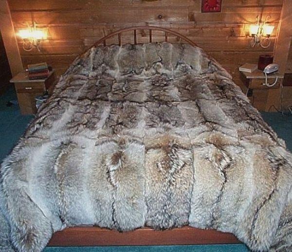 comforter 90x105 all fur full pelt not pieces coyote fur blanket600 x 518   100KB   www.glacierwear.com