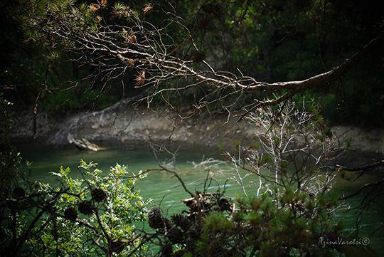 Μια λίμνη πολύ κοντά στην Αθήνα, η λίμνη Μπελέτσι φωτογράφισα και θέλω να σου την δείξω μέσα από τούτη την ανάρτηση: http://www.eikoneskaipsithyroi.gr/2015/08/limni-beletsi.html