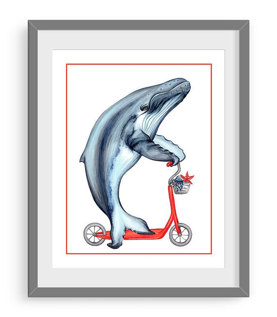 Humpback whale in scooter print by Amelie Legault on Etsy, start at $10.00 Click here to buy: https://www.etsy.com/ca/listing/230612705/humpback-whale-print-whale-on-red?ref=shop_home_active_6 #baleine #baleineabosses #humpbackwhale #whale #whaledrawing #whaleprint #dessinbaleine #affichebaleine #etsy #etsymontreal #etsycanada #amelielegault #scooter #trottinette
