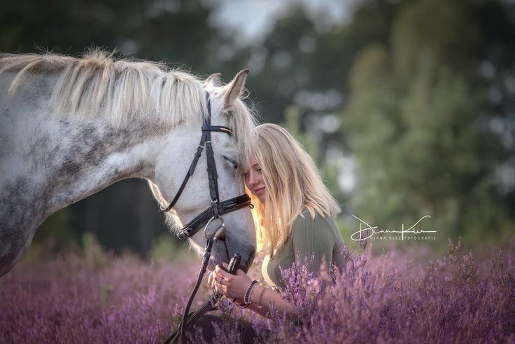 Dieses Bild ist während meines Kurzurlaubs in der Lüneburger Heide entstanden. Traumhaftes Wetter und traumhafte Models, was will man mehr? #Pferde #pferdefotografie #lüneburgerheide