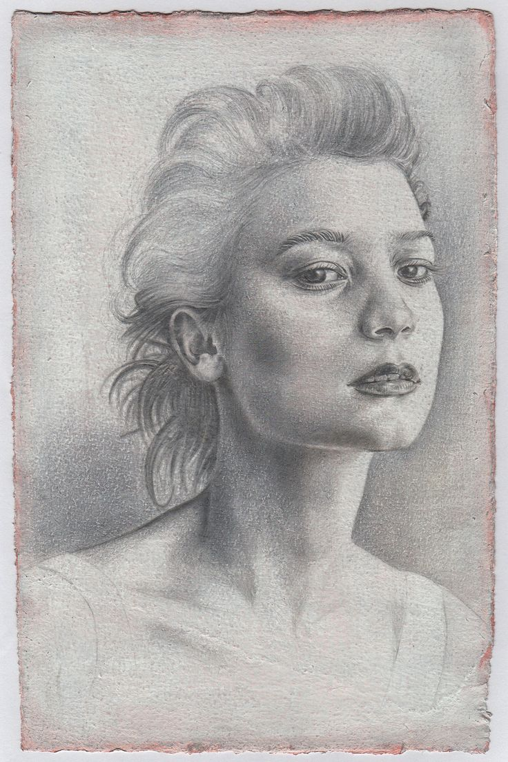 Portrait - Francesco Amatori    Silverpoint Drawing