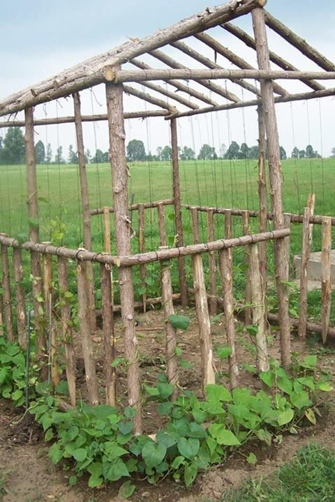 trellis house.. good with snap peas or beans running up it and lettuces, etc. inside - no instructions but it's fairly easy to eyeball.