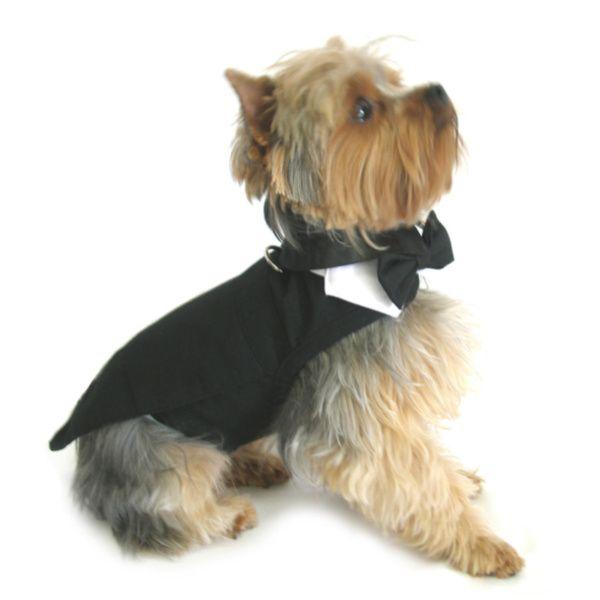 Doggie Design Black Dog Harness Tuxedo w/Tails, Bow Tie, and Cotton Collar XXS #doggiedesign #dogs #tuxedos #dogtux #dogharness #bowtie #weddings #doggiefanshop #pricefalls