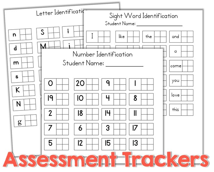 Teacher Friendly Data Collection {freebie} what a GREAT free assessment tool