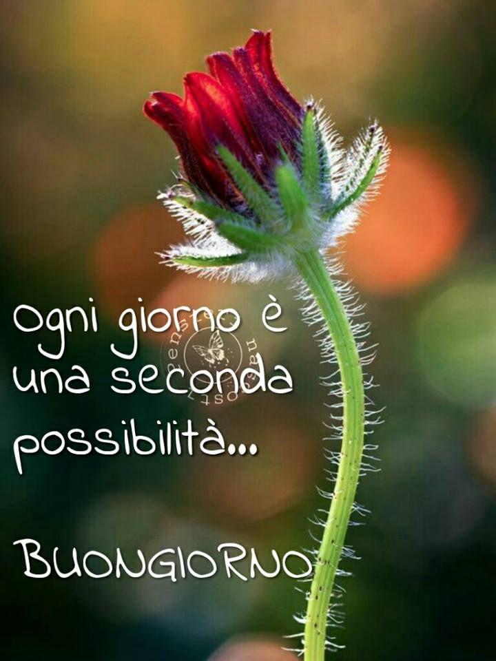 Ogni giorno è una seconda possibilità... Buongiorno #buongiorno