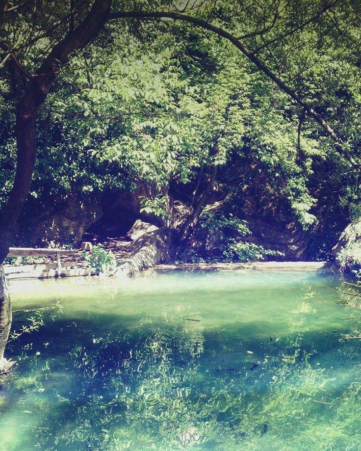 #turkey #karabuk #karabük #turkiye #türkiye #travel #safranbolu #green #lake #river #nature #water #trees #tree #asia #shadows #summer #freedom #happiness #boşver #joy #friends #erasmus http://tipsrazzi.com/ipost/1518166849161534062/?code=BURnLSqDBpu