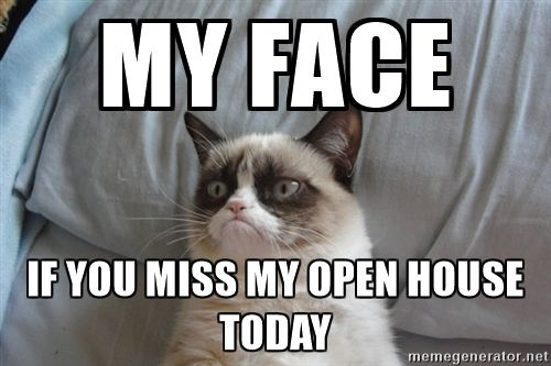Grumpy cat good - My face If you miss my open house today