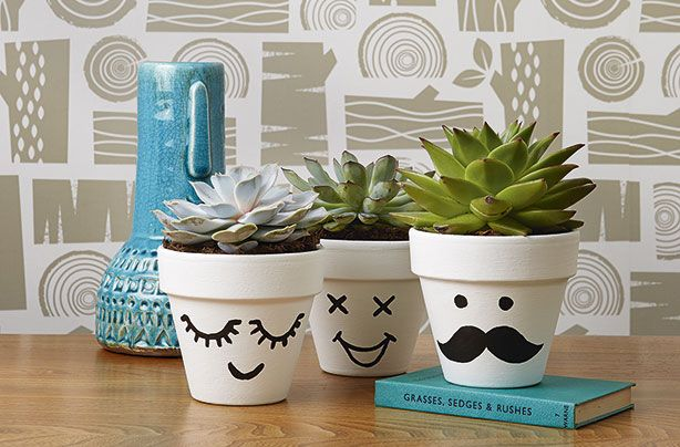 Make these cute, funny face flower pots!