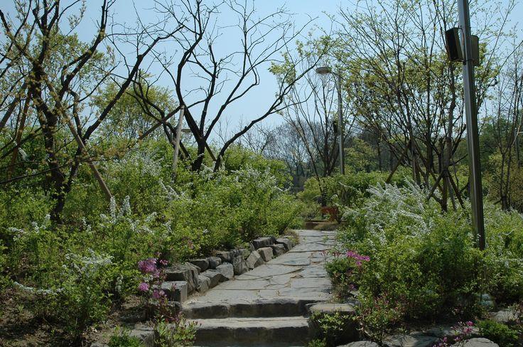 [#서울바캉스⑥] 중랑캠핑숲은 서울에서 가장 철저하게 관리되는  캠핑장입니다. 중랑구가 직접 시설을 깔끔하게 돌보고 있으며,  예약한 사람만 출입할 수 있기 때문에 안전하고 조용하죠.   다만 쾌적한 환경 유지를 위한 규칙을 잘 지켜주셔야 하고,  매달 홈페이지에서 매달 15일 오후 2시부터 선착순으로 진행되는  예약 전쟁을 치뤄야 한다는 거!