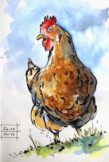 BB-Aquarelle: Les poules bougent tout le temps / Chickens move a...