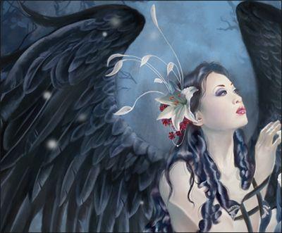 Asian Angel 54