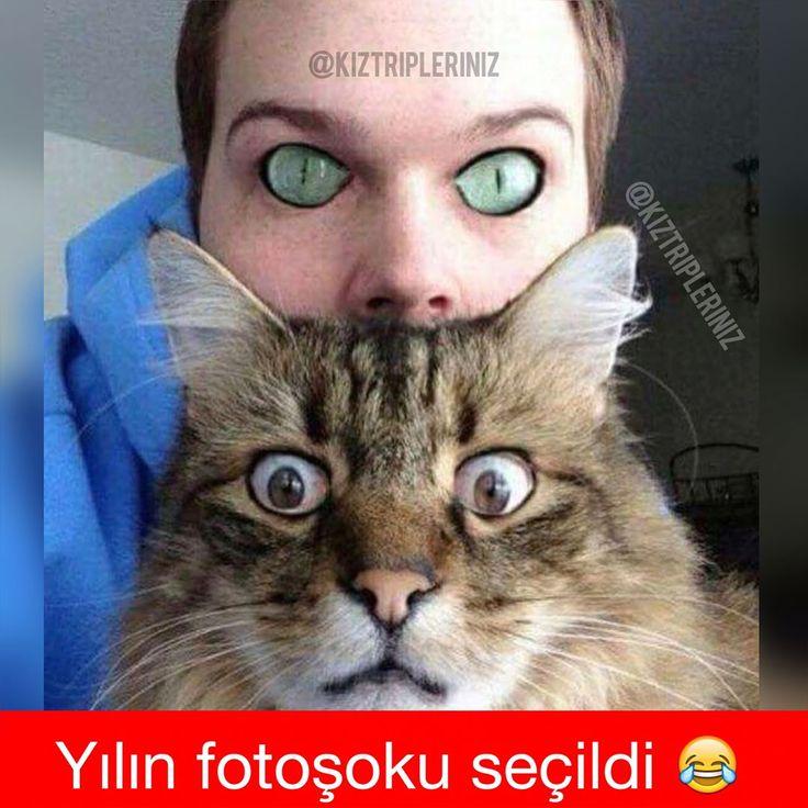 Yasaklanmasın fotoşok��kaydırr❤️ . Sevdiklerinizi etiketleyin hemen�� . #caps #mizah #komedi #komik #eğlence #photoshop #sanat #kedi #mutlukuk #kızlar #erkek #fake #troll #sevgili #cuma #hayat #istanbul #türkiye #izmir #bugün #akşam #herkese #kanka #süper #harika #güzel http://turkrazzi.com/ipost/1518170924758010338/?code=BURoGmWhwni