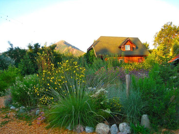 Informal style. Landscape designer's garden. | Landscaping ...