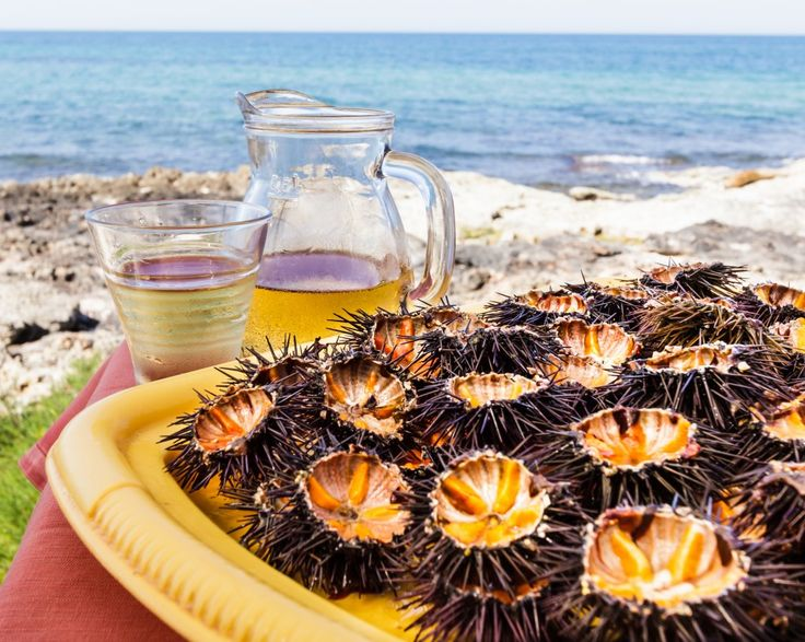 Pesca di frodo a Taranto: sequestrati 30.000 ricci di mare