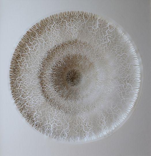 Structures cellulaires, mousse d'arbres, bactéries, coraux, radiolaires… rien n'est trop microscopique pour cet artiste britannique.