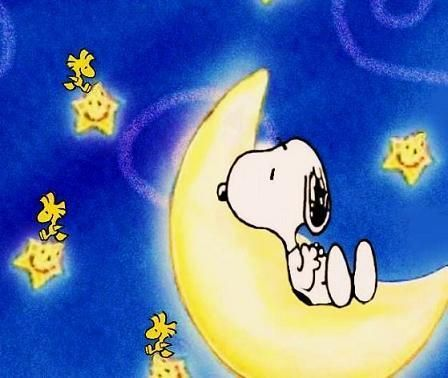 Goodnight Snoopy