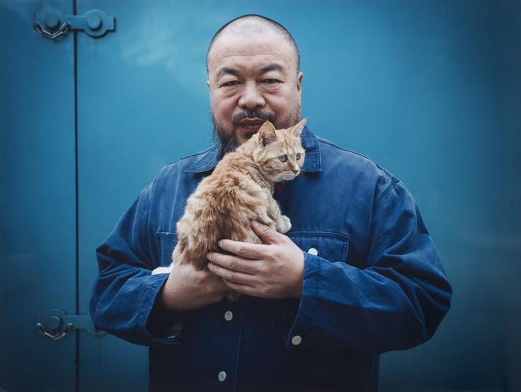 46 best Artz Catz images on Pinterest Kitty cats, Cat lovers and - k che wei matt
