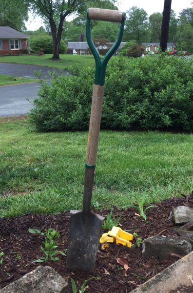 What Is A Transplant Spade: Using Transplant Spades In The Garden Almost every gardener has a shovel, and probably a trowel too. And while you can get a long way with a few simple tools, it's sometimes nice to have the perfect utensil for the job. One such item is the tree transplant spade. Learn more in this article.