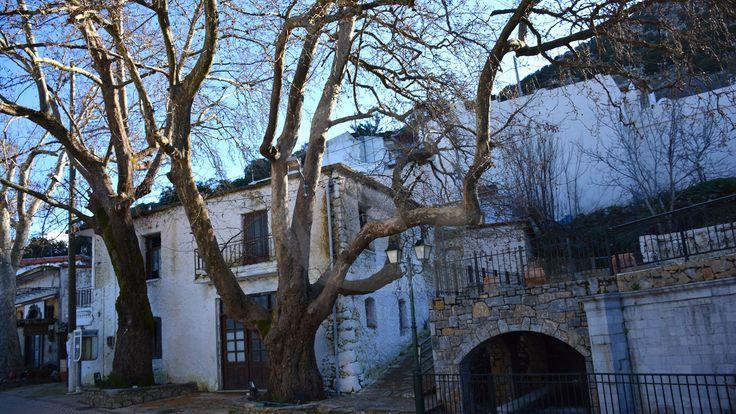 Το χωριό Ψυχρό είναι ένα από τα 18 χωρία του Οροπεδίου Λασιθίου, και βρίσκεται νοτιοδυτικά του οροπεδίου στους πρόποδες του όρους Τούμπα Μούτσουνας.