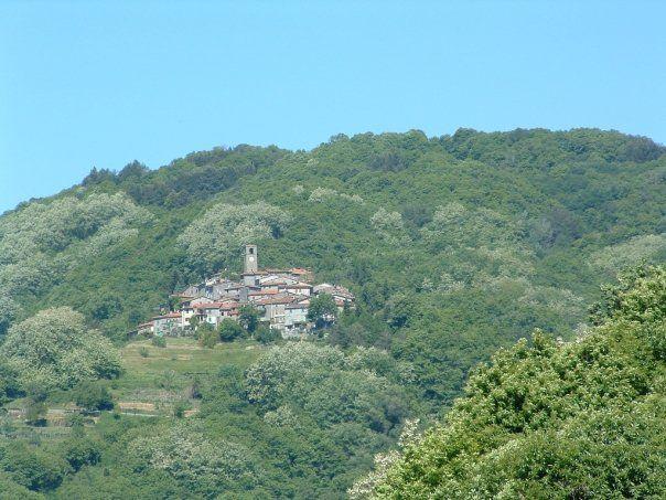 Boveglio nel Villa Basilica, Toscana