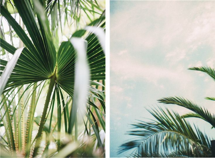 The Blog » Say It In Seven: Kara Riley Freelance Photographer